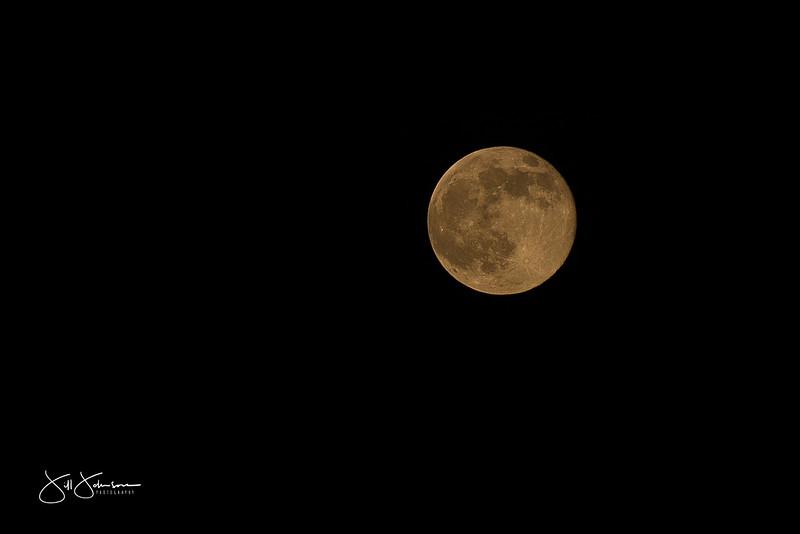 moon-9309.jpg