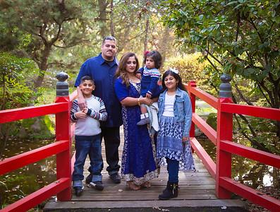 Hamed Family