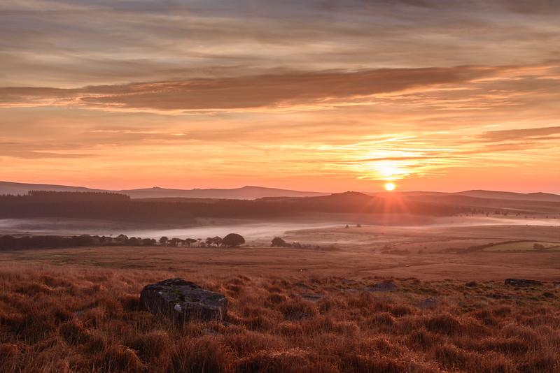 0544_Dartmoor.jpg