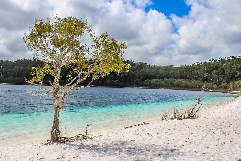 adventures in Queensland Australia Fraser Island