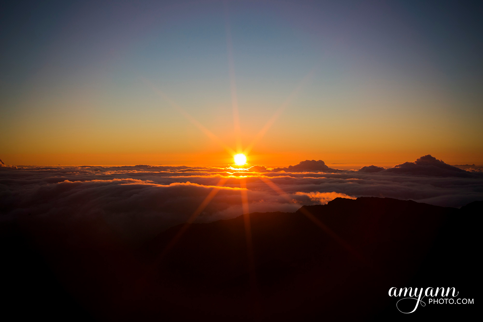 hawaii_amyannphoto_80
