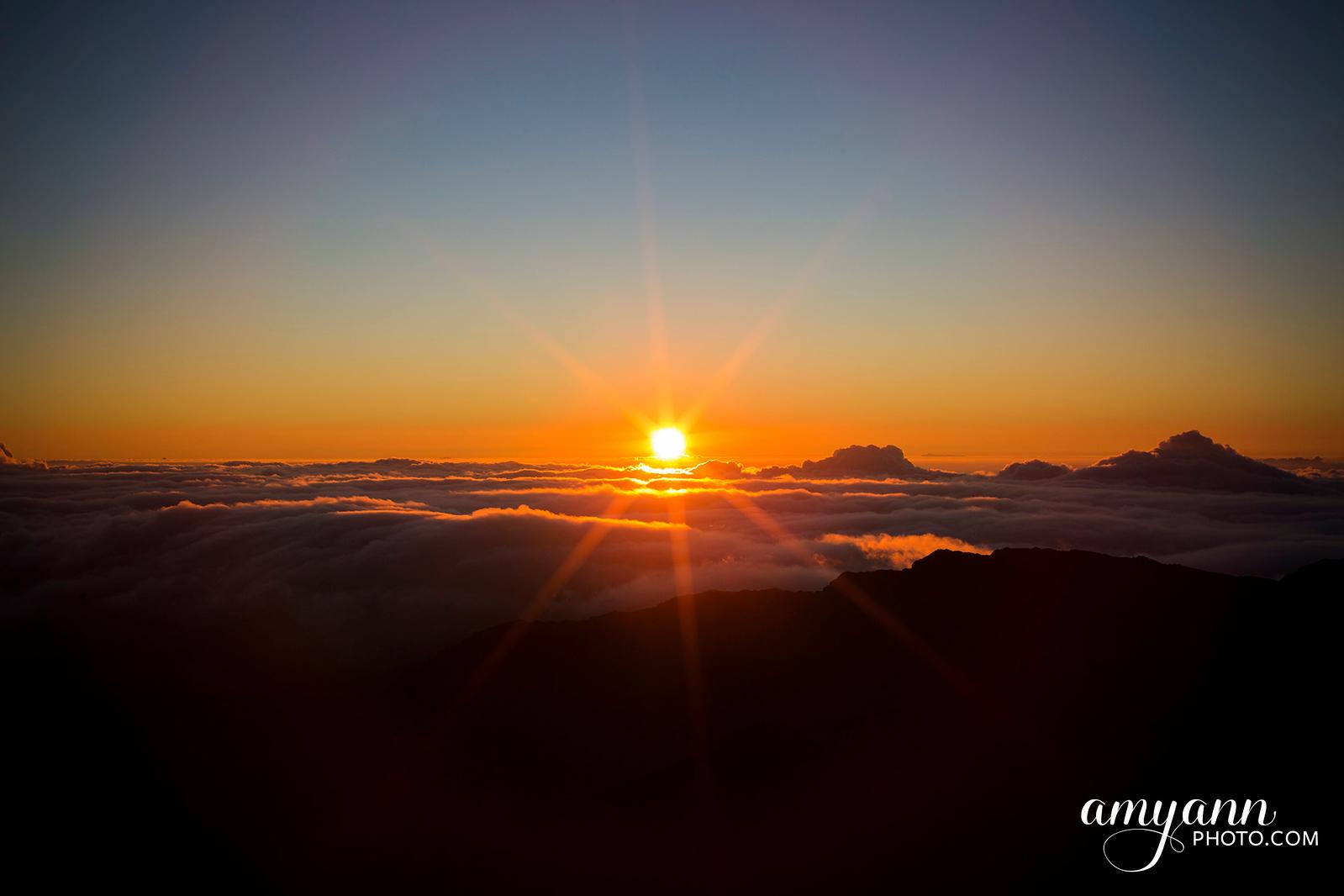 hawaii_amyannphoto_80