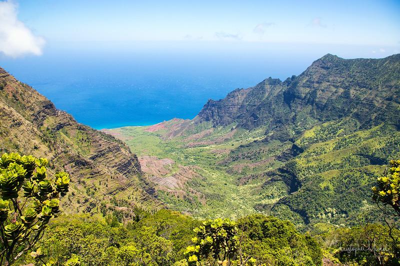kauai2_20120714_2396.jpg