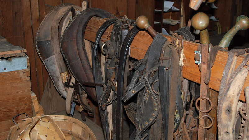 Harnesses and bridles