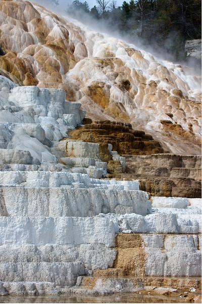 Mammoth Hot Springs 03.jpg