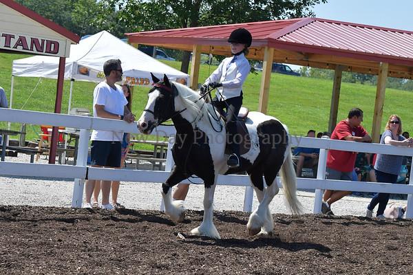 37B. Academy Horsemanship WT 9 & 10 Yr.