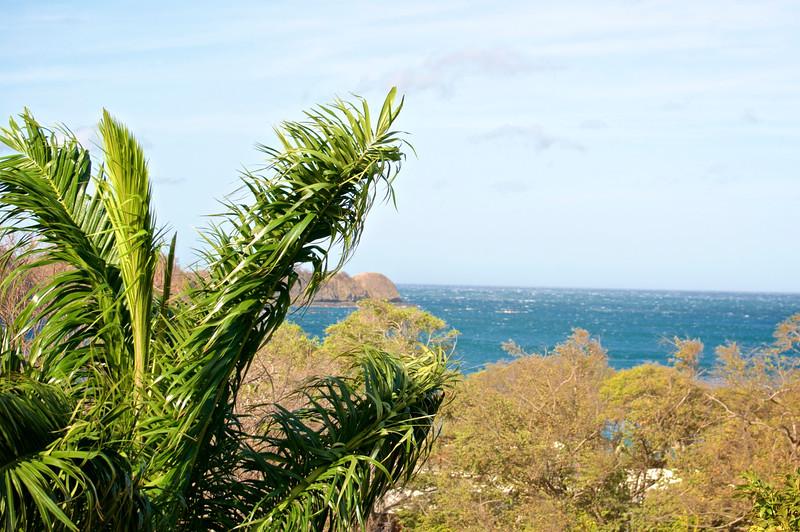 Costa Rica (35).jpg