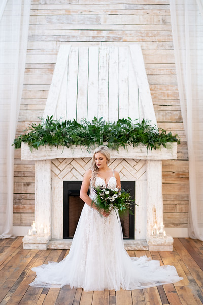 Elegant Bride Portrait
