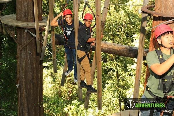 Sequoia Aerial Adventure - ZHIYONG XIE - 5/28/2019