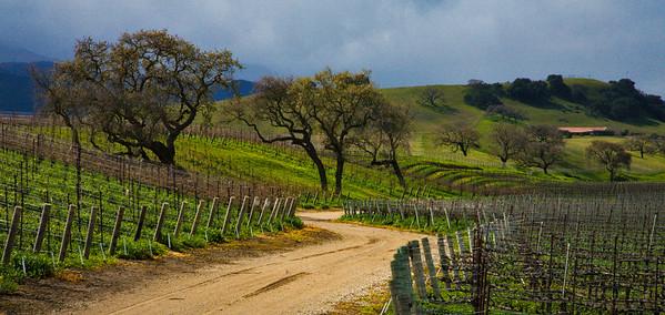 Santa Ynez Valley and Vineyards