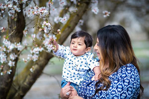 Pavan Family photos