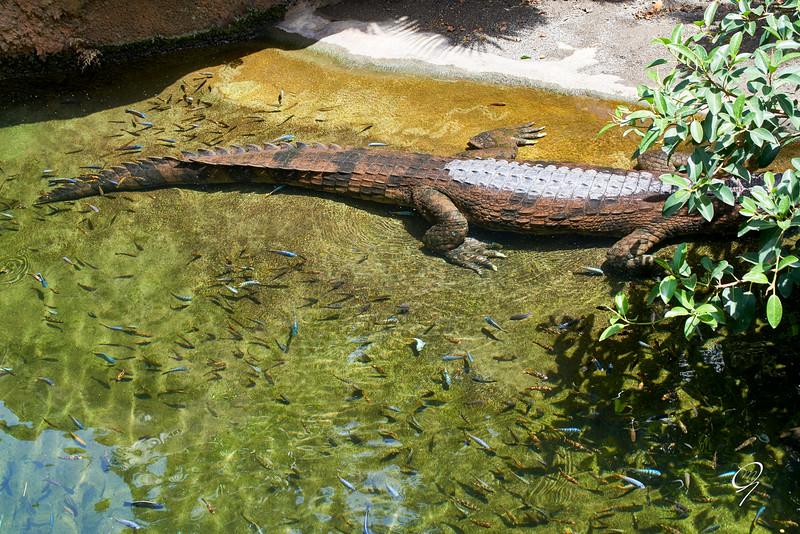 Biopark 300616W-93.jpg