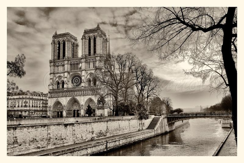 Notre-Dame_20150219_0004-B&W.jpg