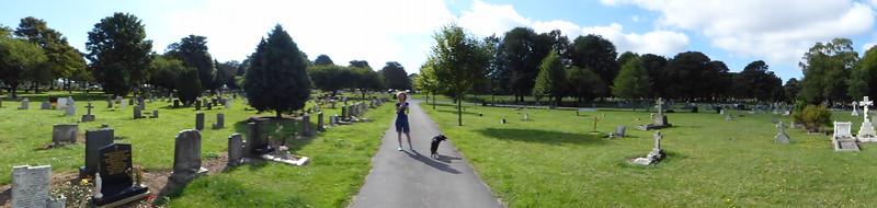 2013-09-22 Walk to weelsby woods
