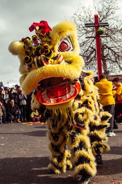 Giophotography CNY 2013-4231.jpg