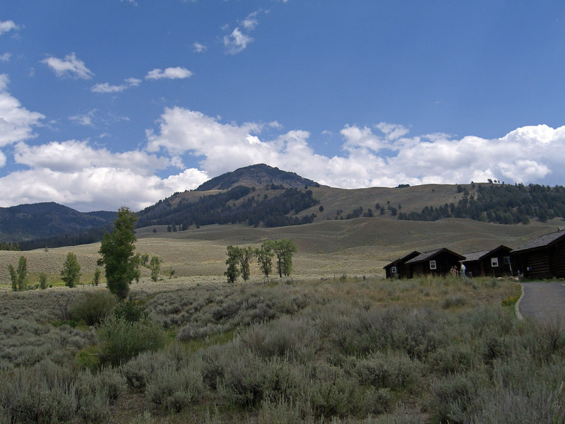 Druid peak and cabins at Buffalo Ranch Lamar Valley.jpg