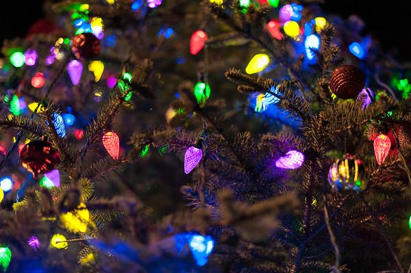 New Dorp Lane Christmas Event