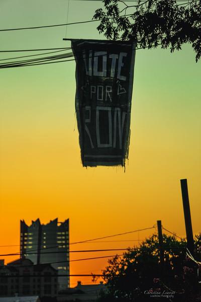 Vote for Ron.jpg