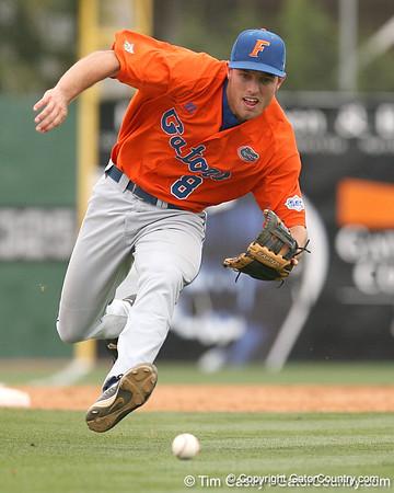 Photo Gallery: Baseball at South Carolina, May 2008