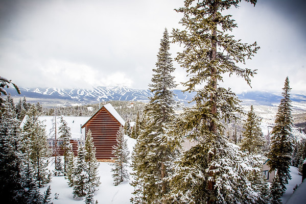 breck 2014