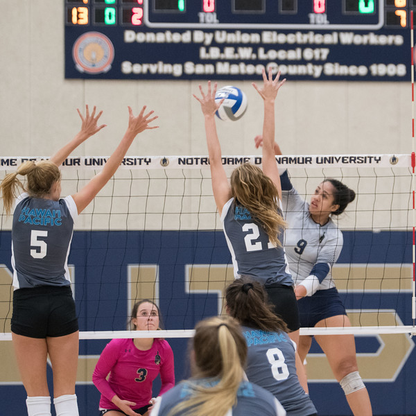 HPU Volleyball-91891.jpg