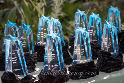 Sonoma Valley Star Awards 2015