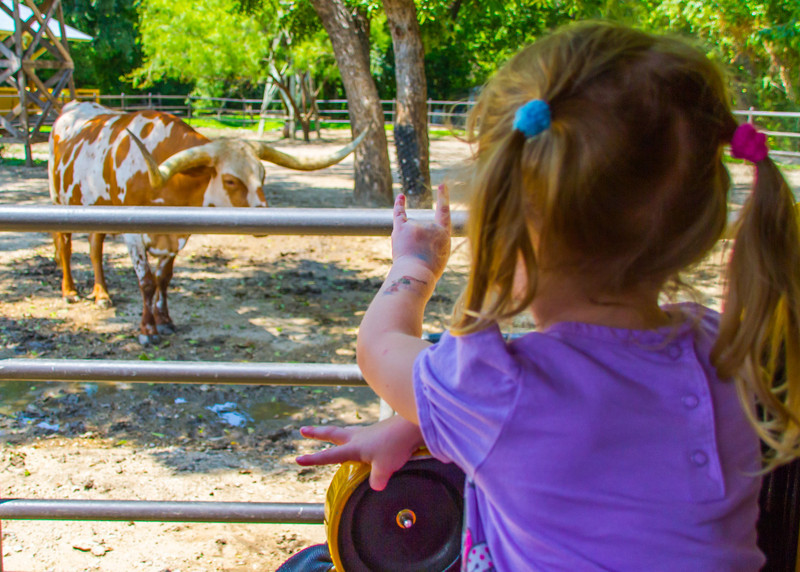 DSR_20120823Zoo with Nat and Jules277.jpg