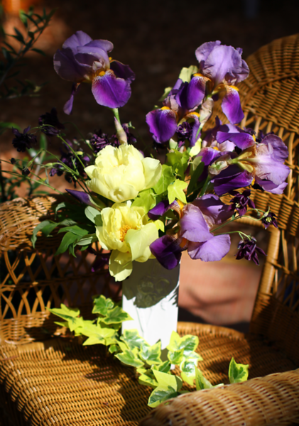 ANOTHER VIEW OF THE BOUQUET....Liz got me the Iris Vase!!!  I couldn't resist building a bouquet from these 3 flower gifts in my garden.. The Iris is from my friend Diana Hillygus, the Peony from Tony Raposo, and the Columbine a surprise volunteer in the garden this year ....a gift from Ma Nature!! Thank you dear friends!! There is nothing so precious as gifts for the garden ...I remember each person as their special plant comes  back into bloom each and every year....and I treasure the heck out of them!!