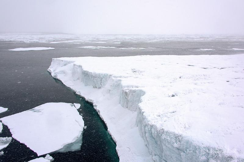 wasteland of ice.jpg