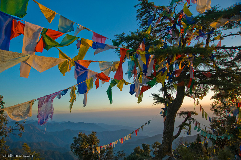 Prayer flags in the foothills of the Himalaya