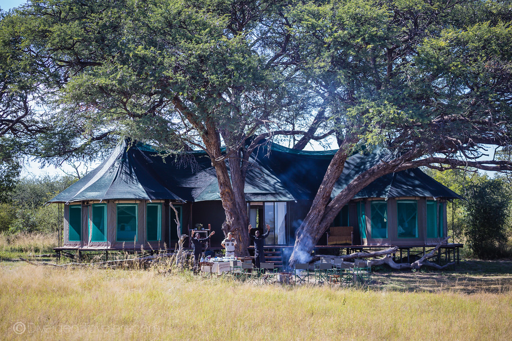 Bomani Tented Camp in Hwange National Park