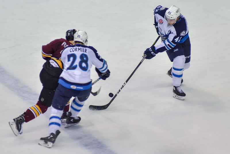 2018 Sharks at Wolves-8598.jpg