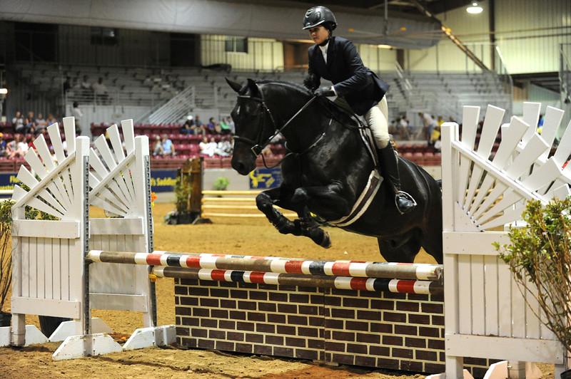 Horse show (34).jpg