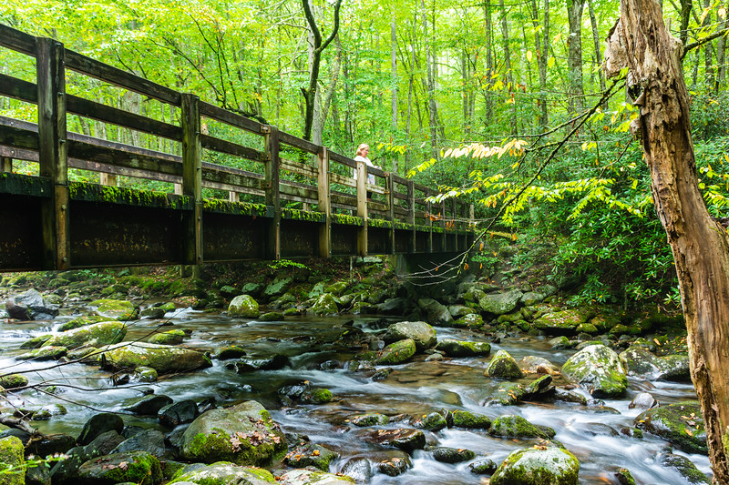 The bridge to the Kephart Prong trailhead, over the Oconaluftee River in Great Smoky Mountains National Park, September 25, 2018. (Joseph Forzano / Deep Creek Films)
