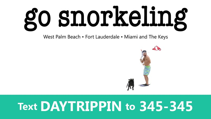 _DAY TRIPPIN - NEW COMMERCIAL 1 go snorkel GIF.mp4