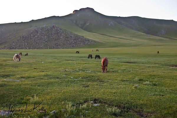 Mongolia-2011