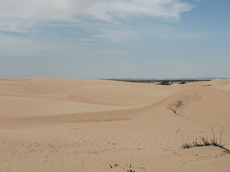 Dunes Cross ripples.jpg