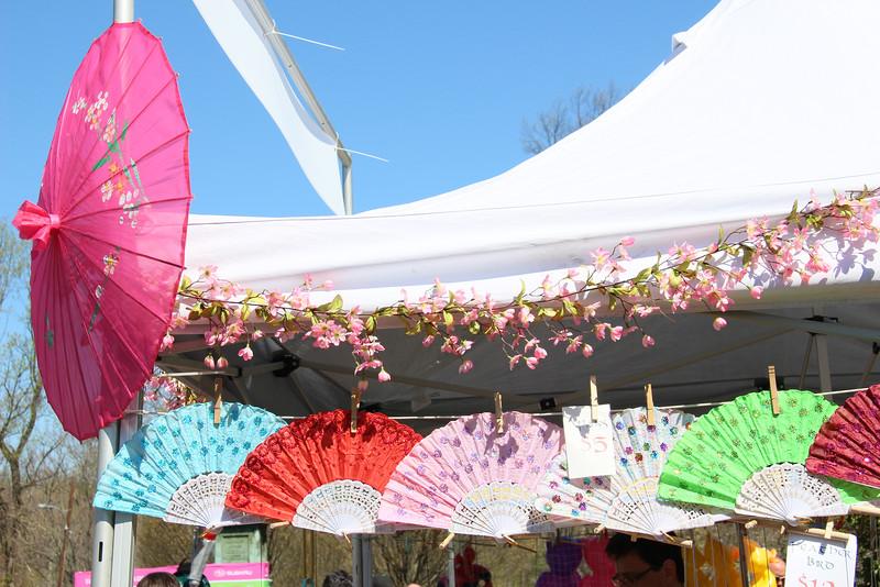 Sakura-0014.jpg