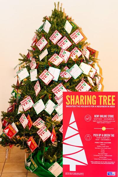 20171111 Sharint Tree-0885.jpg