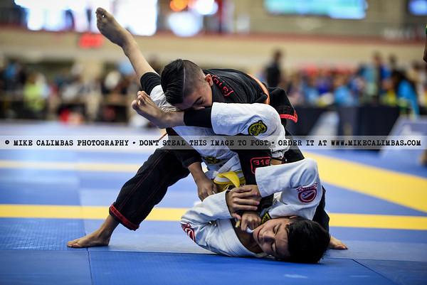 Austin Winter International Open IBJJF Jiu-Jitsu Championship - January 26, 2020