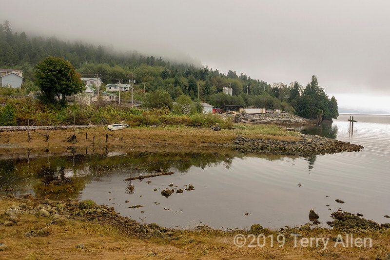 Gabion River and fog, Hartley Bay, British Columbia.jpg