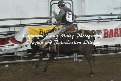 Steers Saddle Bronc 4-24-2016