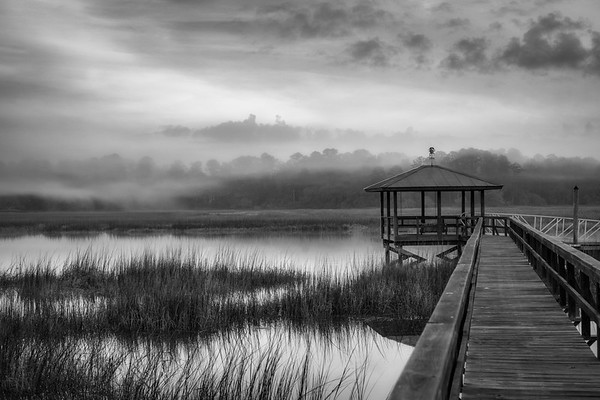 Low Country in B&W