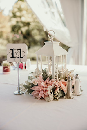 Reception (First Dance, Speeches, Cake Cutting)