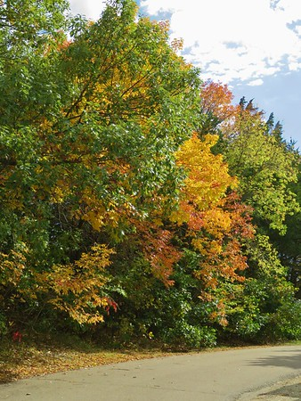 Fall Colors October 2017