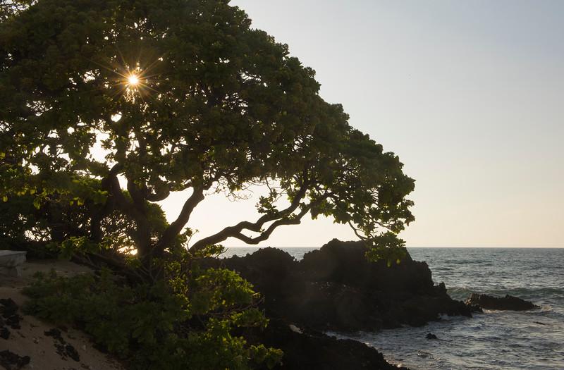 hawaii2_0246.jpg