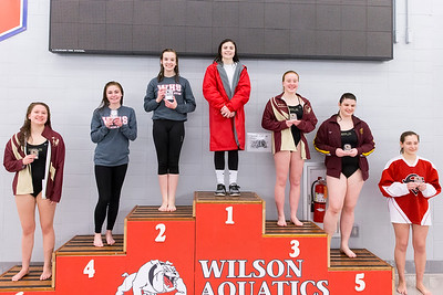 Awards for Central Penn League Diving Championship 2/12/2016