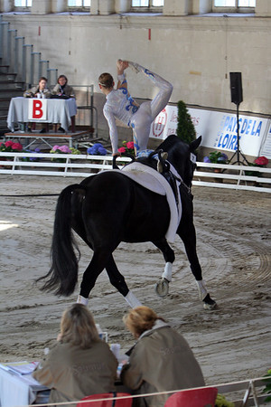 Saumur 2007 Technical program Individuals