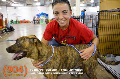Mega Pet Adoption @ Jacksonville Fairgrounds - 7.14.17