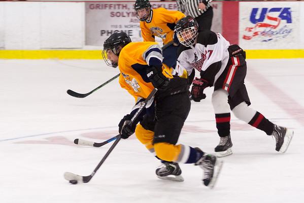 Hatfield Ice Hawks at York Devils 12-21-2014